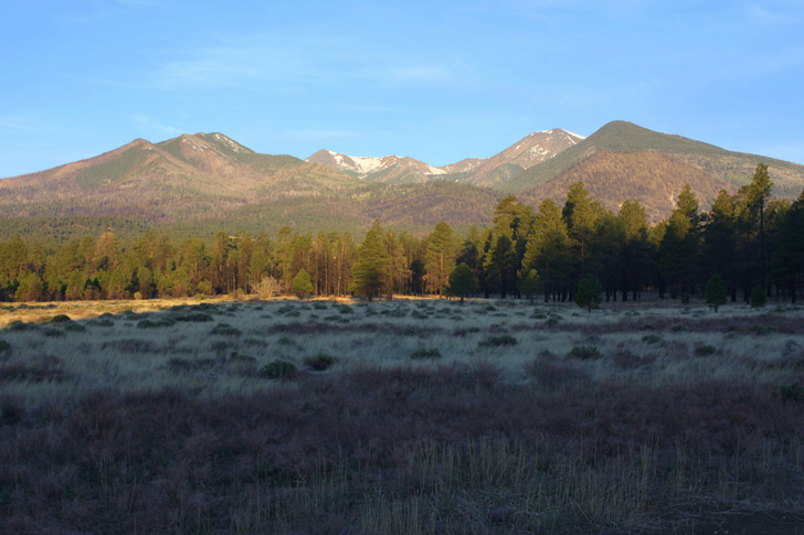 Morning light warms the northeastern flanks of San Francisco Mountain. Viewed from Bonito Park in Sunset Crater National Monument, Humphreys Peak, the highest point on San Francisco Mountain's eroded rim, is the distant summit second from the right.